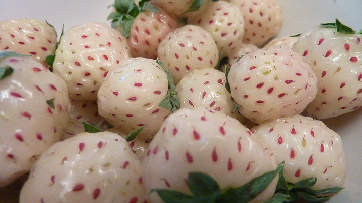 Pineberries