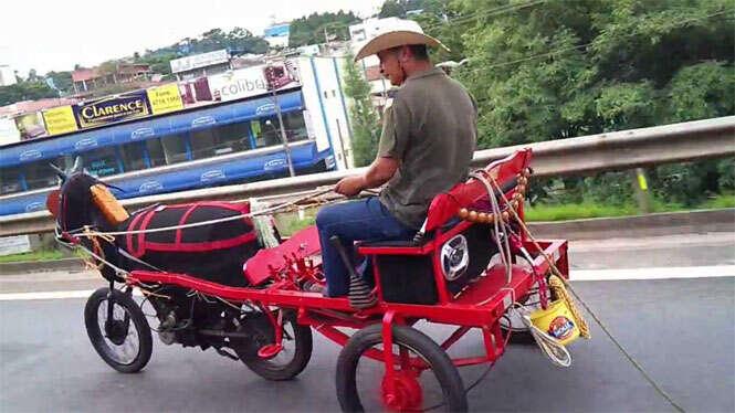 Homem constrói charrete motorizada e vídeo faz sucesso na web