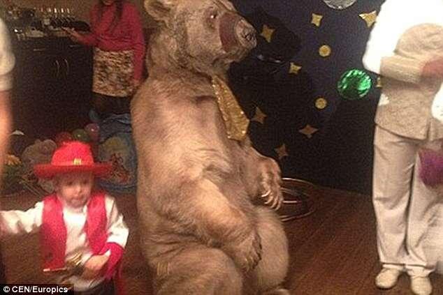 Homem causa polêmica ao contratar urso de circo para aniversário do filho