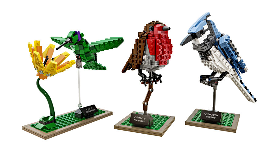 Apaixonado por aves cria pássaros feitos de Lego