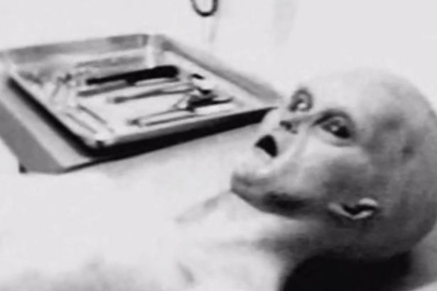 Especialista garante ter encontrado imagens reais de alienígena