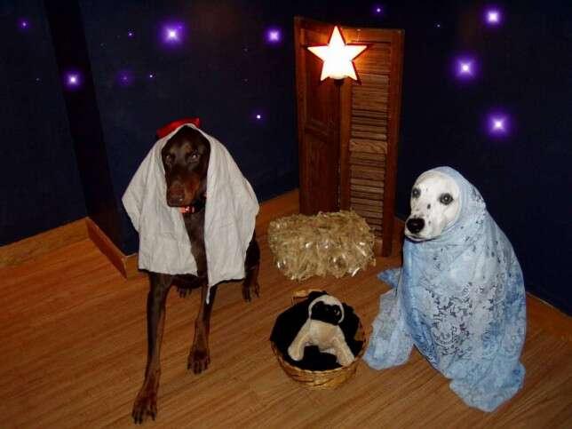 Os piores presépios de Natal do mundo