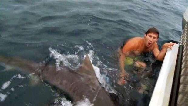 Jovem quase é mordido por tubarão ao tentar fazer brincadeira com animal