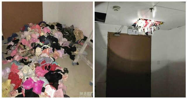 Homem é preso após roubar mais de duas mil calcinhas de vizinhas