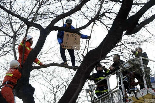 Homem escala árvore próxima de hospital para tentar vender seu rim