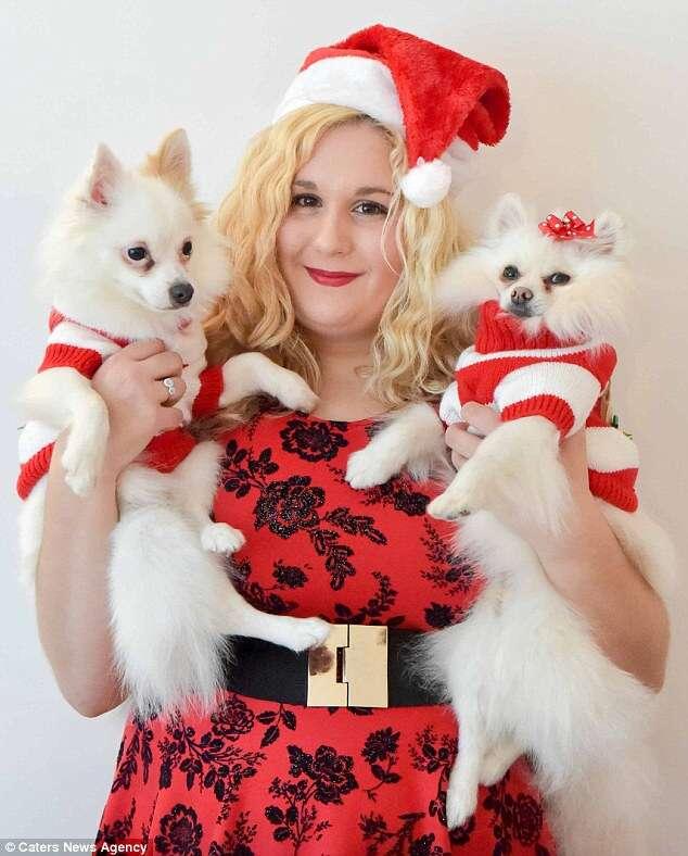Mulher gasta 16 mil reais em presentes de Natal para seus cãezinhos