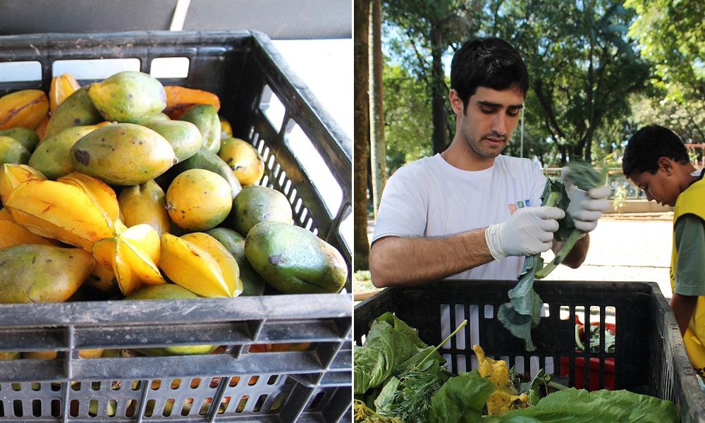 Projeto em São Paulo ajuda a alimentar pessoas carentes