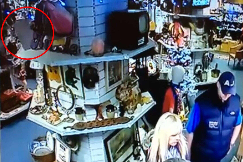 Câmeras de segurança flagram momento em que objeto cai sozinho de prateleira de loja