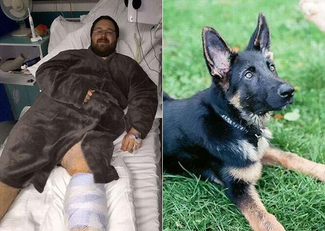 Homem quase perde a perna após ser arranhado por cão de estimação