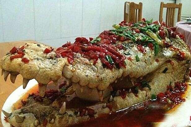 Imagens de crocodilo sendo servido em casamento causa polêmica na web