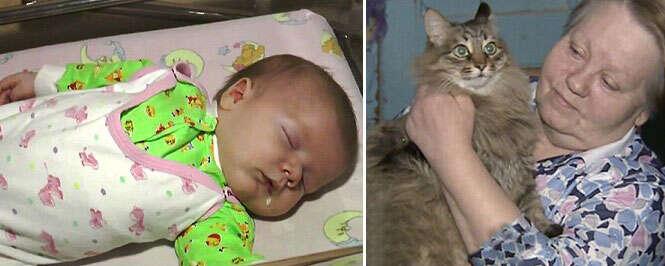 Gata salva vida de bebê abandonado em rua à temperatura abaixo de zero