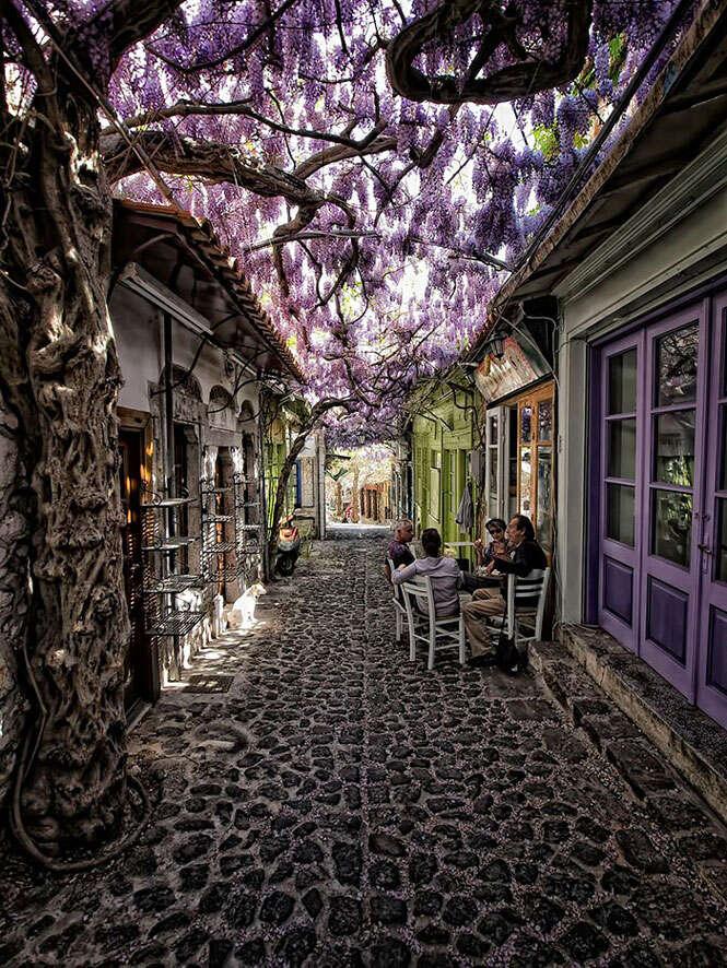Ruas com flores