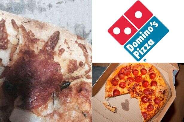 Homem encontra barata em pizza que comia em restaurante