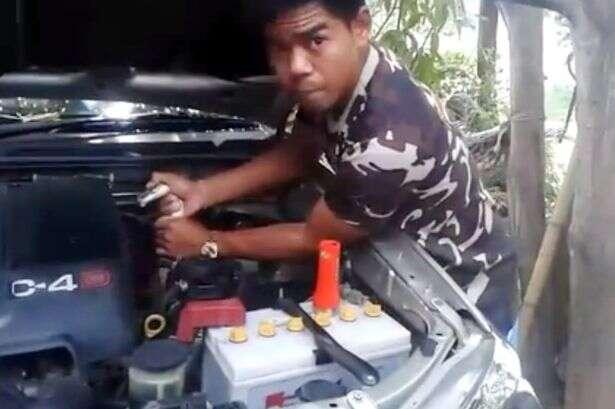 Vídeo flagra homem puxando cobra viva de motor de carro