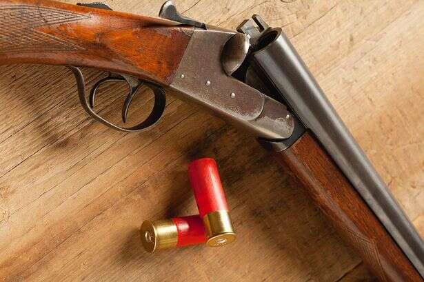 Menina de 11 anos mantém assaltante sem ação após apontar arma na cabeça dele