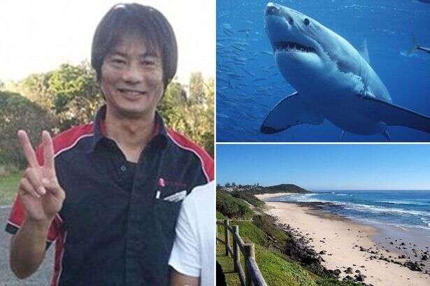 Surfista é morto após ser atacado por tubarão e perder as duas pernas