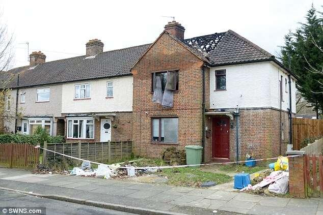 Cão morre após casa ser incendiada