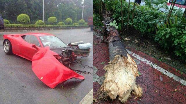 Motorista destrói completamente Ferrari de luxo ao se chocar contra árvore