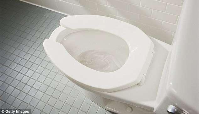 Cientistas criam sistema que é possivel produzir energia usando vaso sanitário
