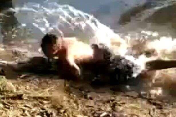Maluco é filmado brigando com crocodilo