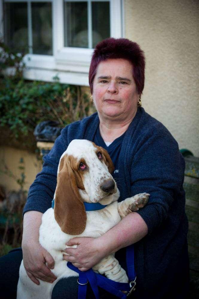 Mulher vende quase todos itens de sua casa para pagar cirurgia nos olhos de seu cachorro