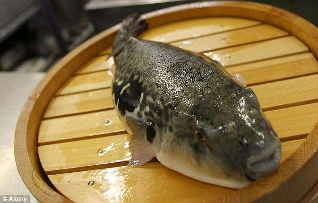 Cinco homens são envenenados ao comerem peixe em restaurante