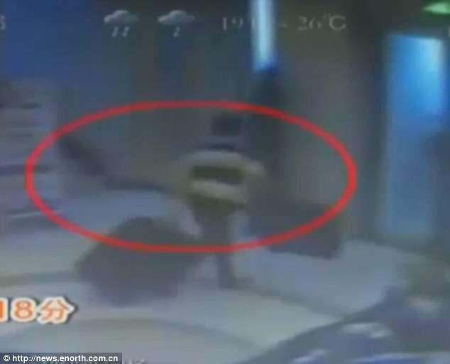 Homem é preso após amordaçar e tentar transportar namorada dentro de mala