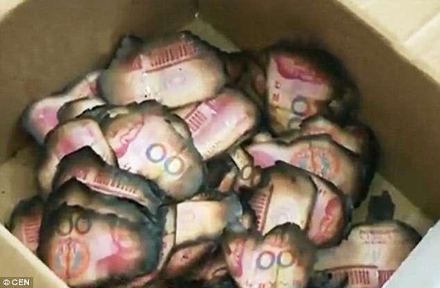 Mulher incendeia mais de 90 mil reais após esquecer que dinheiro estava escondido em forno à lenha
