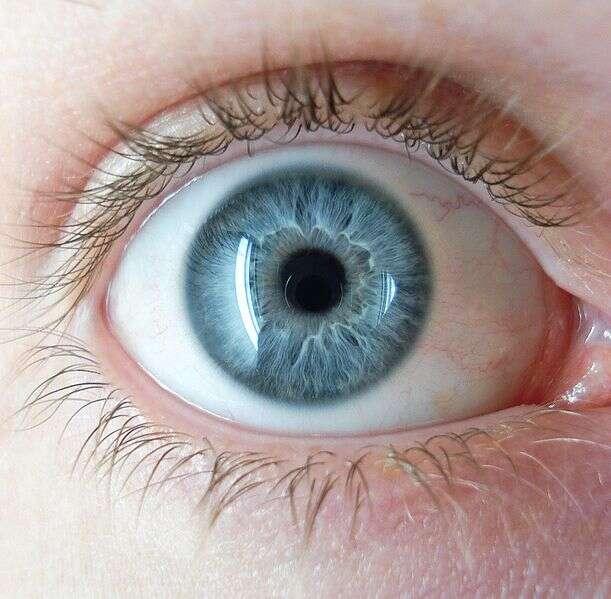 Procedimento a lazer promete fazer qualquer pessoa ficar com olhos azuis