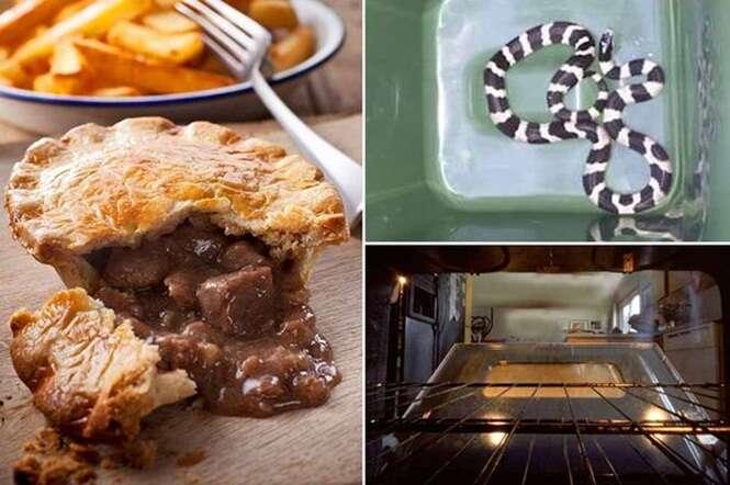 Idoso se preparava para assar torta quando encontrou uma cobra no forno