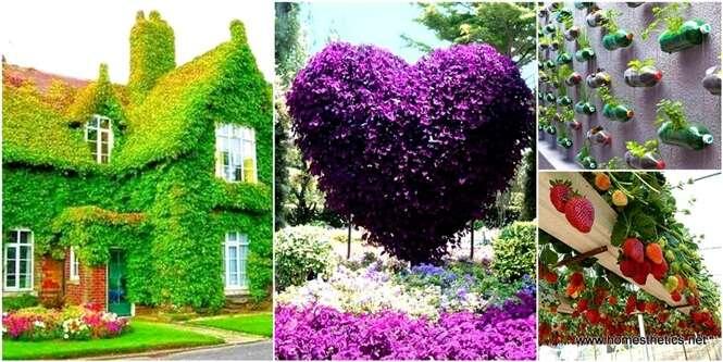 As maneiras mais criativas de criar seu próprio jardim vertical