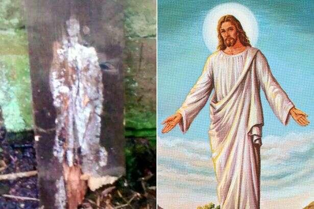Construtor fica chocado ao encontrar imagem de Cristo em pedaço de madeira