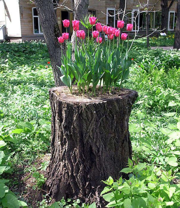 """10 Bulb Garden Design Ideas: 12 Maneiras De Transformar Troncos De árvore Em """"vasos"""