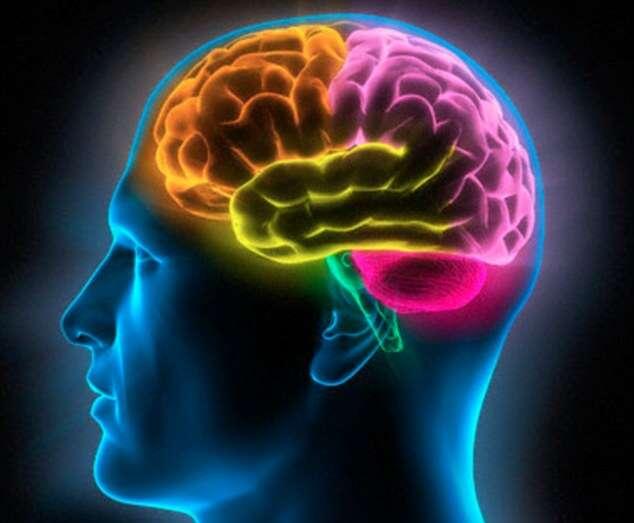 Pesquisa diz que, sofrer simples infecção pode danificar seu QI por anos