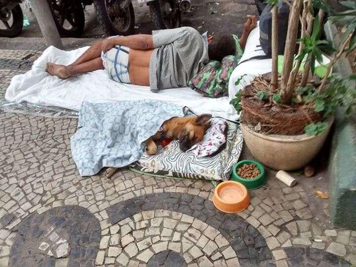 Morador de rua comove internautas ao improvisar cama para cãozinho