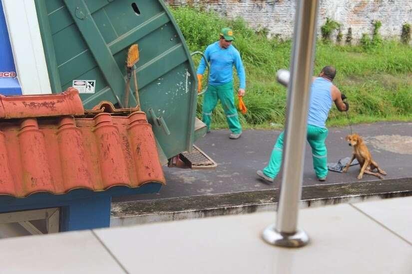 Motorista joga cão em triturador de caminhão de lixo