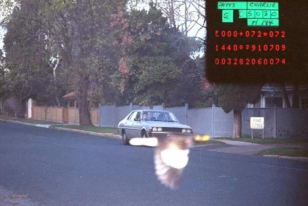 Pássaro salva motorista de levar multa ao tampar placa de veículo em foto