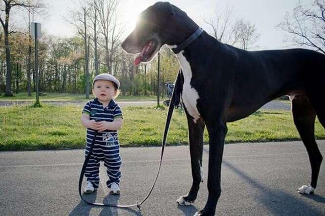 Foto de garotinho segurando coleira de cão muito maior que ele faz sucesso na web