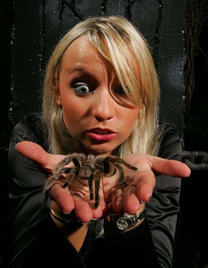 Medo de aranhas e ratos é sinal de que você está saudável