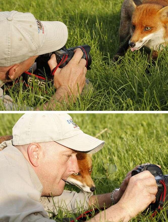 21 animais que acreditam que são fotógrafos
