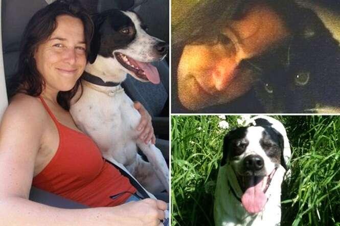 Mulher pretende casar com seu cão de estimação após ficar viúva de seu gato