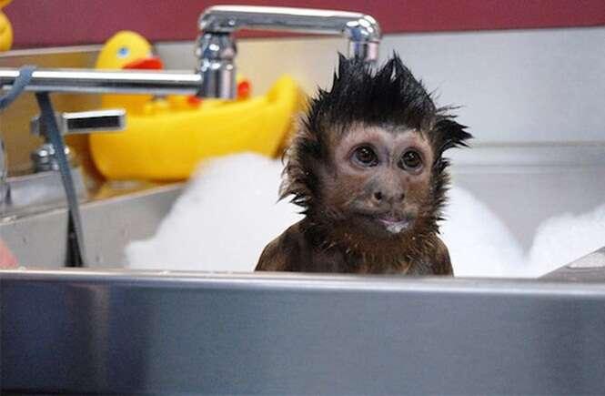 En el banho durante una fiesta en casa de los amigos - 1 9