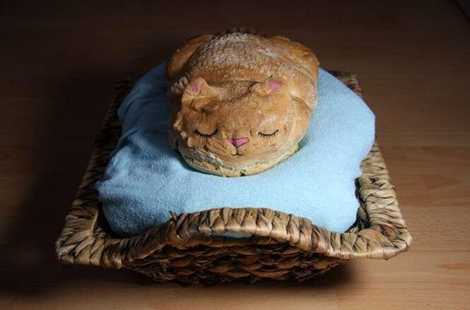 Padeiro faz sucesso criando pães em formato de gatos