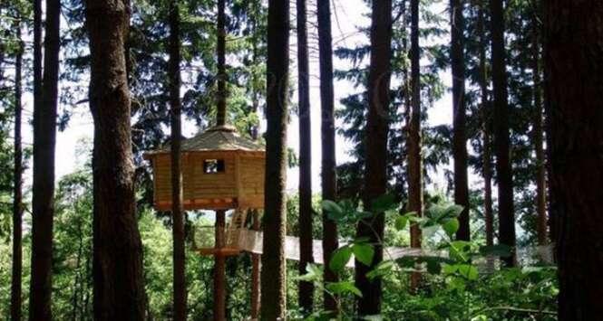 Casas na árvore que você vai querer fazer em seu jardim