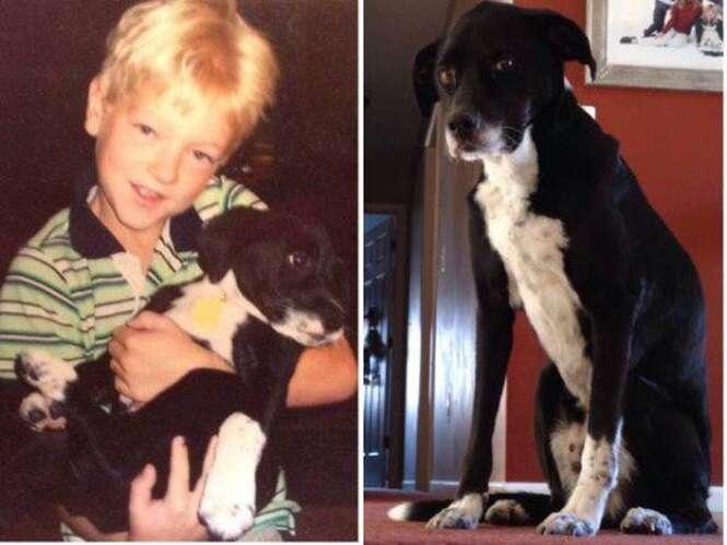 Primeiras e últimas fotos de animais de estimação com seus donos