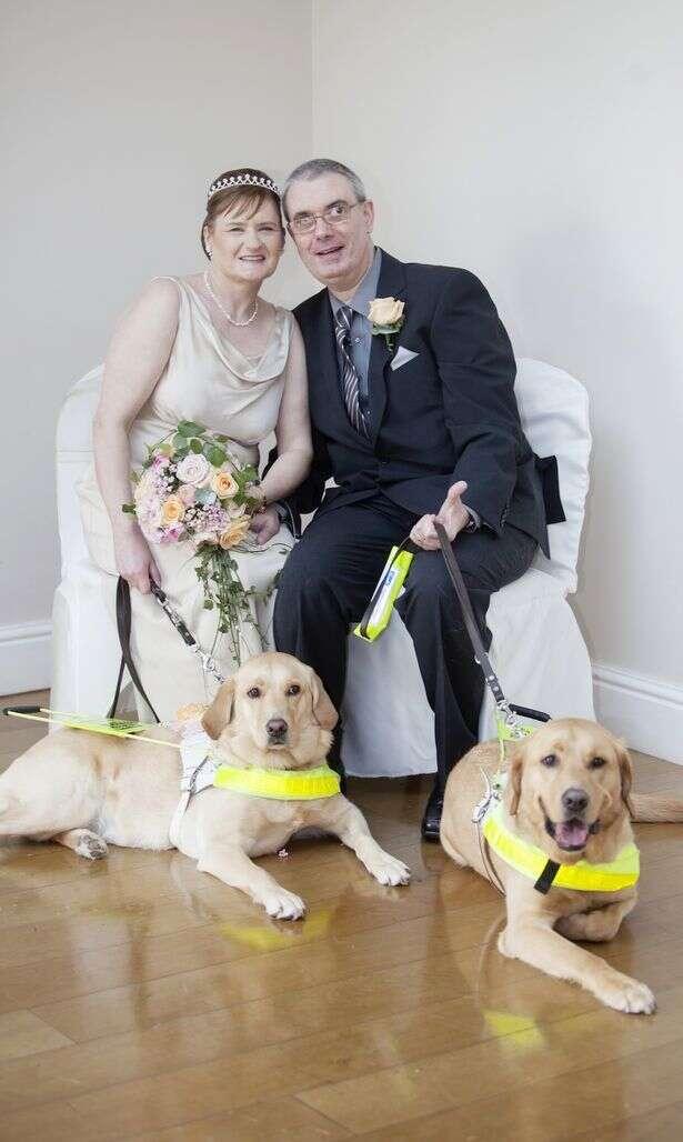 Cegos se casam após seus cães-guia se apaixonarem