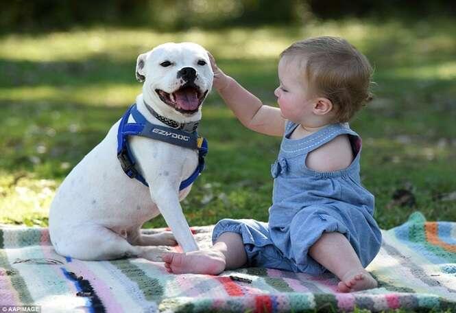 Menina que nasceu sem um dos braços ganha cão sem uma das patas