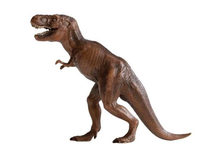 Mulher tem dinossauro de brinquedo removido de sua vagina