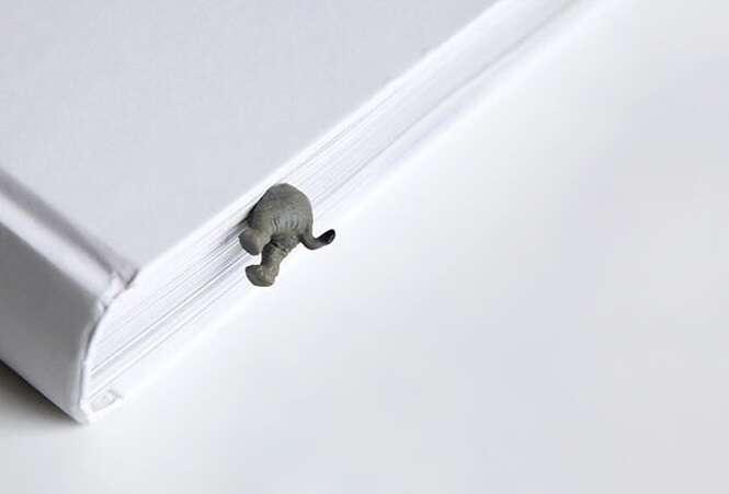 Objetos que os amantes de elefante vão adorar