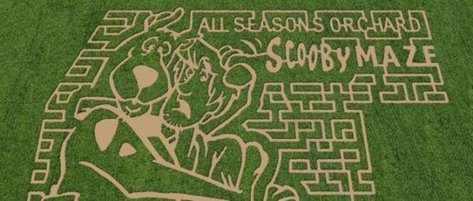 Obras de arte em labirintos de plantações agrícolas